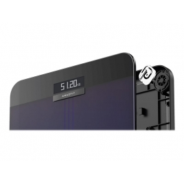 Bascula Xiaomi Amazfit Smart Scale Bluetooth Gradient Aurora